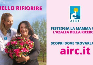 La DLF Nissa Rugby a fianco dell'Airc per l'Azalea della ricerca. Appuntamento domenica 9 maggio a Caltanissetta in piazza Garibaldi